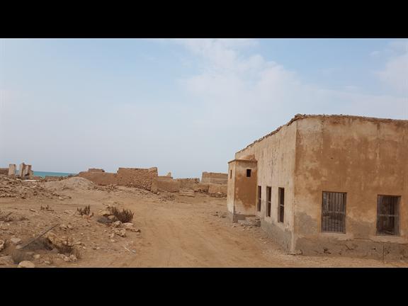 Farm Stay & Falconry Workshop, biletino, 365 Adventures - Qatar